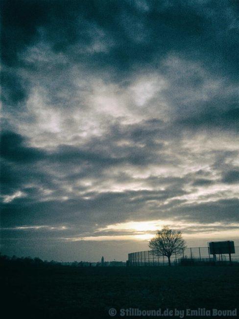 Berlin Tempelhofer Freiheit, auf dem Feld