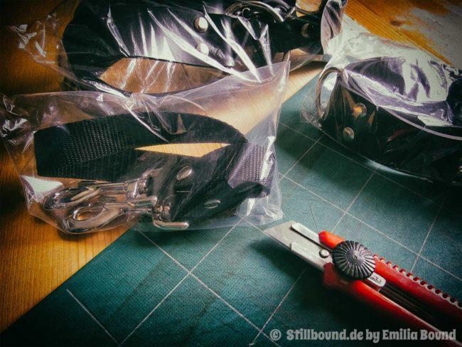 Foto Lieferung Zügel, Halsband und Zwangsgurt.