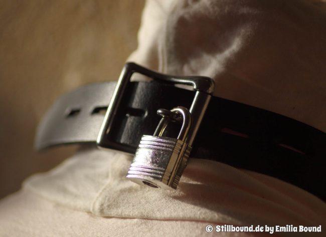 Schnappschuss Petplayer-Halsband mit abschließbarer Schnalle